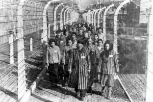 Femmes Auschwitz